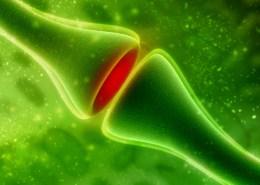 Marianne Krug - Ärztin - Hormoncoach - Seminare - Frankfurt - Hormone - Therapie -Crsahkurs Hormone - Synapse and Neuron cells sending electrical chemical signals
